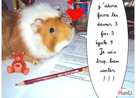 hamster trop cool , lolcats réalisé sur Wamiz