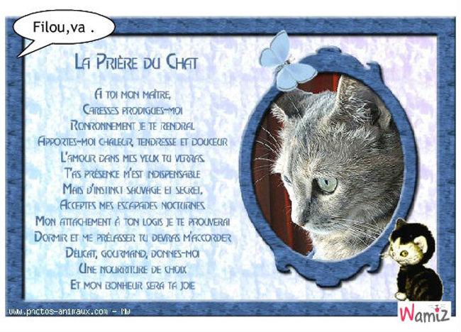 Histoire de la religion du chat, lolcats réalisé sur Wamiz