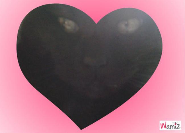 I love you, lolcats réalisé sur Wamiz