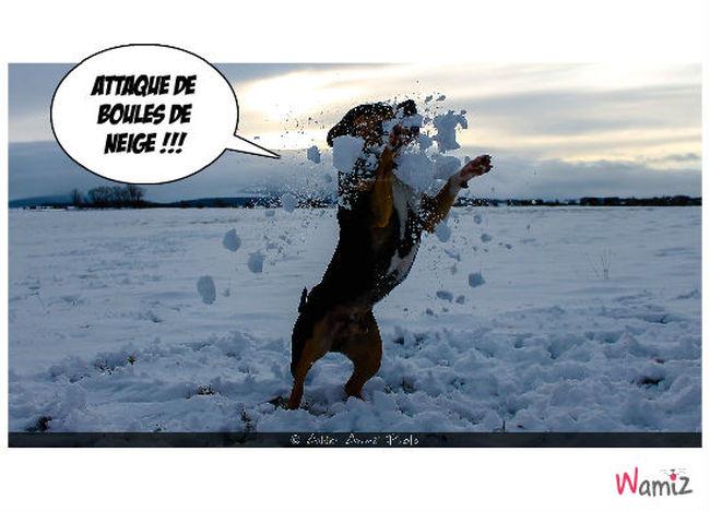 Idol neige , lolcats réalisé sur Wamiz