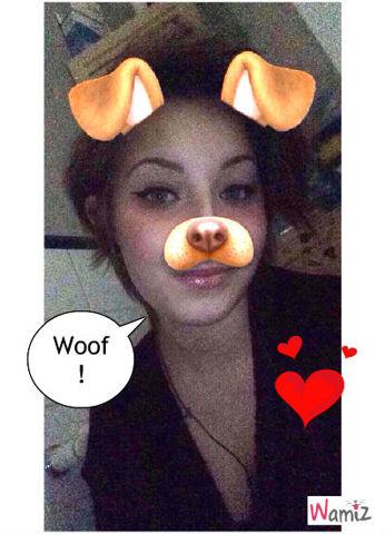 J'aime les chiens!!, lolcats réalisé sur Wamiz