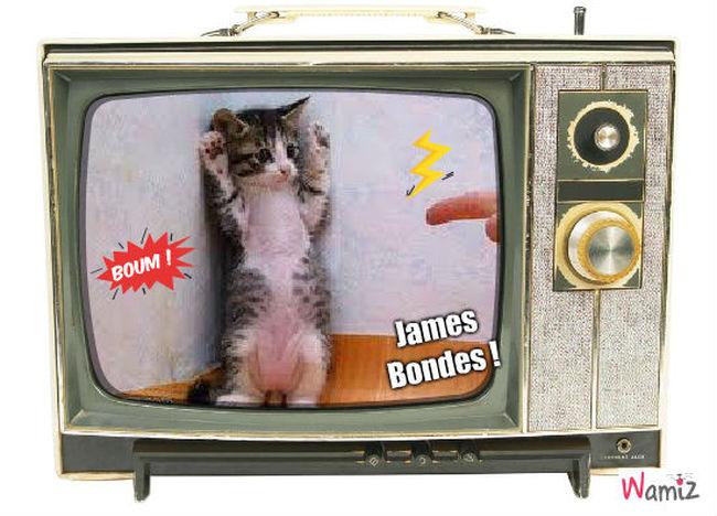 James Bondes !, lolcats réalisé sur Wamiz