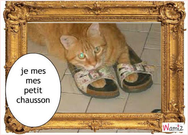 je mes mes chausson, lolcats réalisé sur Wamiz