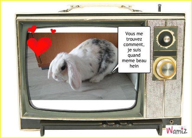 Je passe a la télé !!!, lolcats réalisé sur Wamiz
