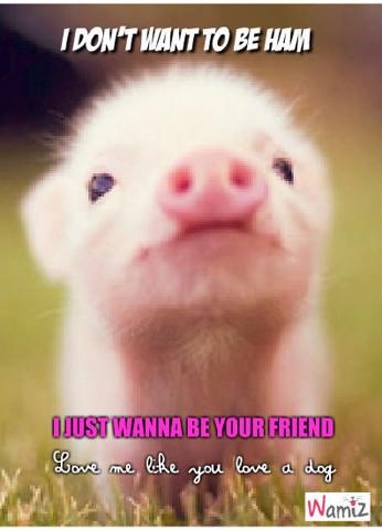 Je veux juste être ton ami, lolcats réalisé sur Wamiz