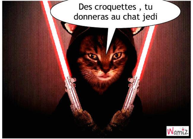 Jedi, lolcats réalisé sur Wamiz