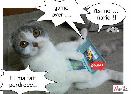 jeux vidéos : Tooniz lolcats réalisé sur Wamiz