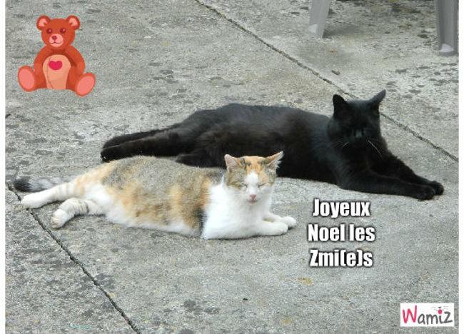 joyeux noel, lolcats réalisé sur Wamiz