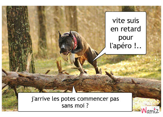 """Résultat de recherche d'images pour """"apéro humour chien"""""""
