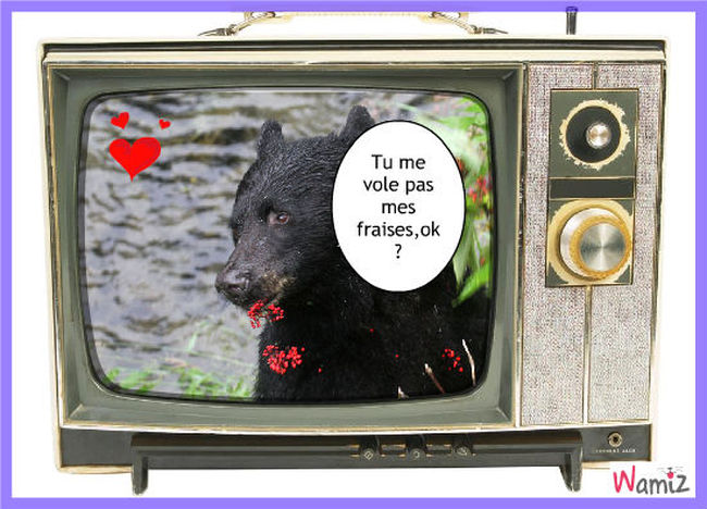 L'ours qui mange, lolcats réalisé sur Wamiz