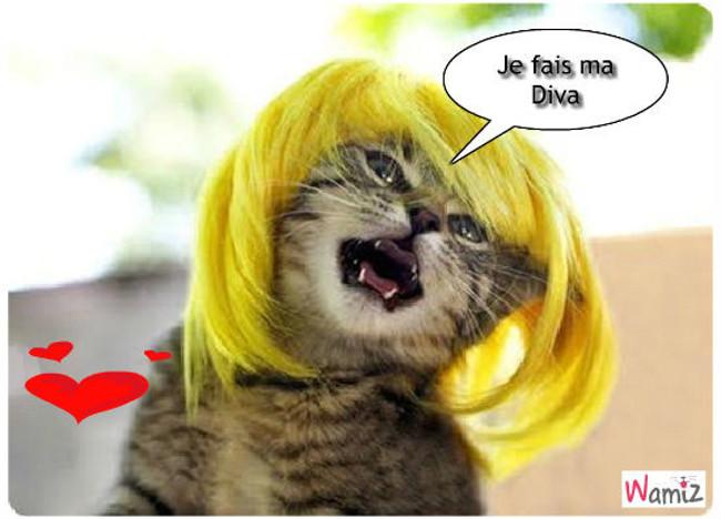 la Belle Blond , lolcats réalisé sur Wamiz