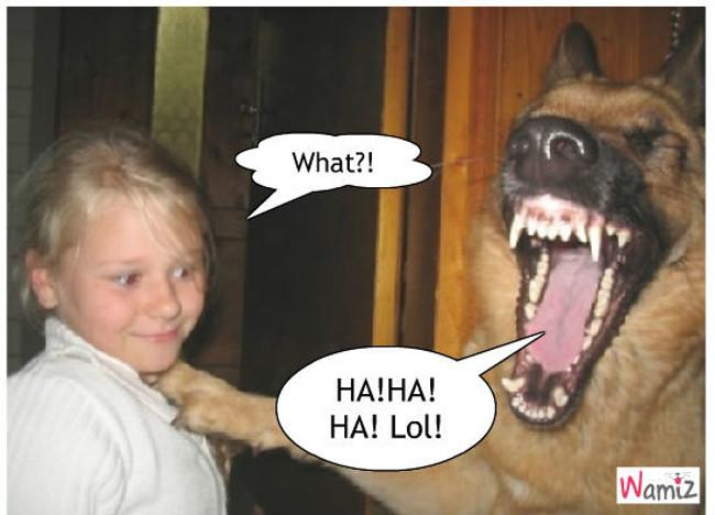 la blague la plus drôle au monde, lolcats réalisé sur Wamiz