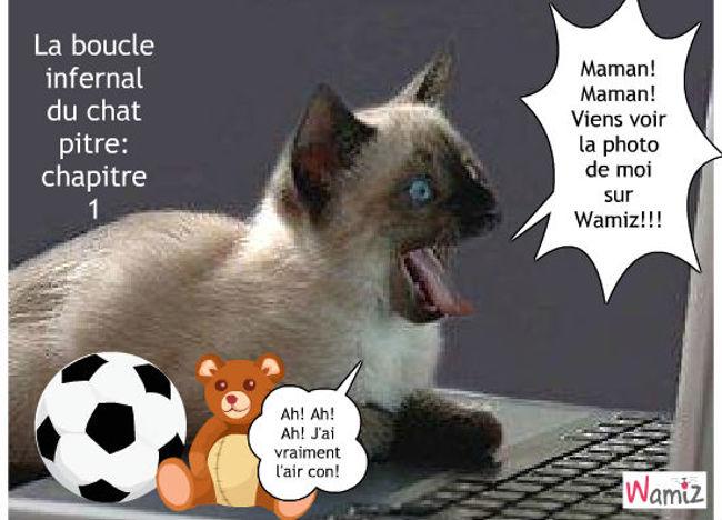 La boucle infernale du chat pitre: chapitre 1., lolcats réalisé sur Wamiz