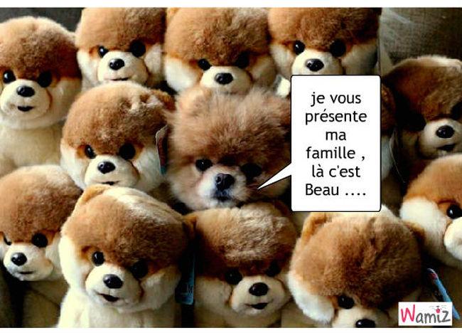 la famillela famille, lolcats réalisé sur Wamiz