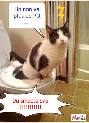 La louse quand t est aux WC, lolcats réalisé sur Wamiz