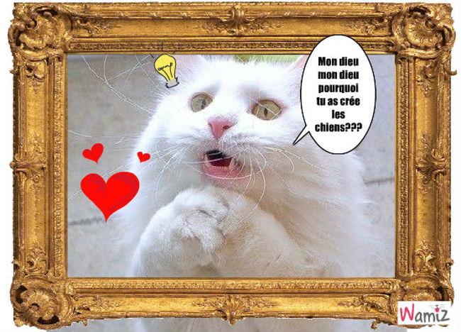 la prière du chat, lolcats réalisé sur Wamiz