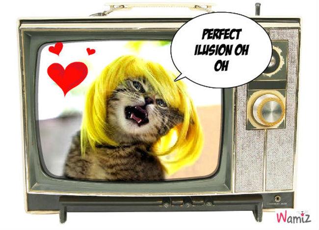 lady gaga le chat , lolcats réalisé sur Wamiz