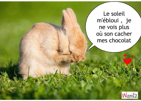 Connu lapin mignon 4 : Tooniz lolcats réalisé sur Wamiz JO08