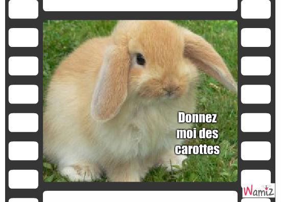 Lapin trop mimi tooniz lolcats r alis sur wamiz - Photo de lapin mignon ...