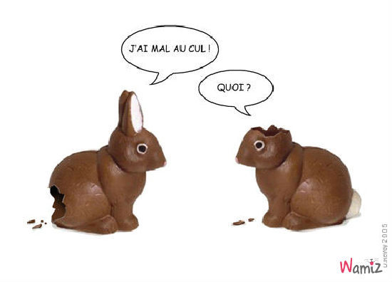 Un petit peu d'humour - Page 4 Lapins-de-paques-44086