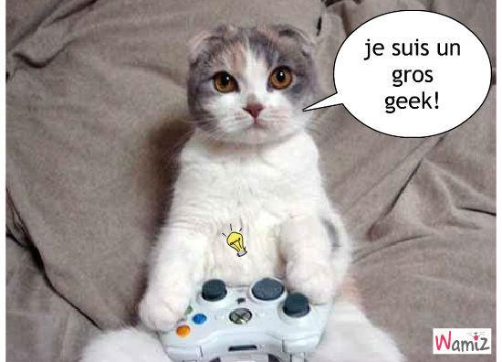 le chat geek, lolcats réalisé sur Wamiz