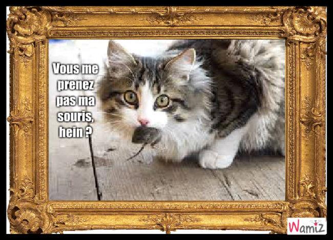 Le chat ne veut pas qu'on lui pique sa souris..., lolcats réalisé sur Wamiz