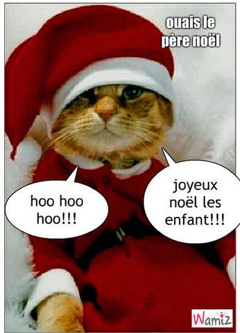 Chats noel humour - Image de chat de noel ...