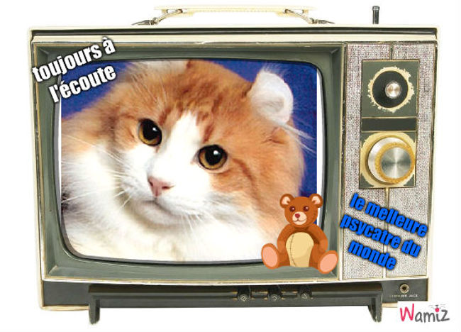 le chat psychothérpeute, lolcats réalisé sur Wamiz