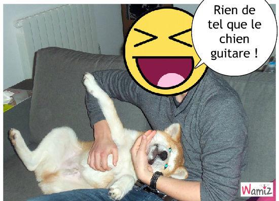 Le chien guitare !, lolcats réalisé sur Wamiz