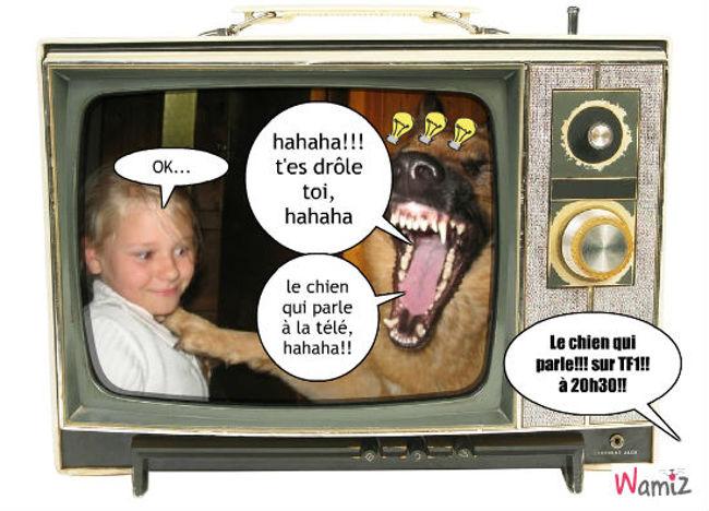 le chien qui parle, lolcats réalisé sur Wamiz