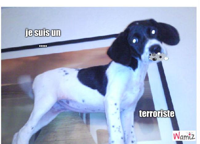 le chien terrowafle chien terroriste, lolcats réalisé sur Wamiz