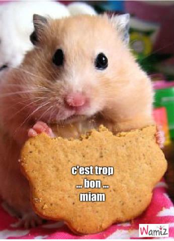le gouter des hamster, lolcats réalisé sur Wamiz