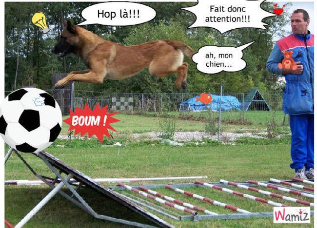 le meilleur chien footballeur au monde?, lolcats réalisé sur Wamiz