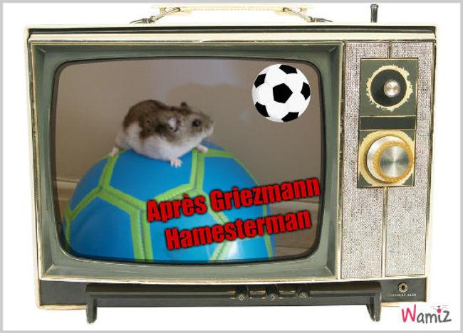 Le nouveau footballeur !!!, lolcats réalisé sur Wamiz
