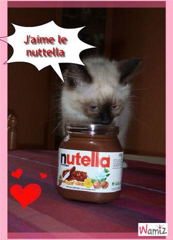 Le NUTELLA !!!, lolcats réalisé sur Wamiz