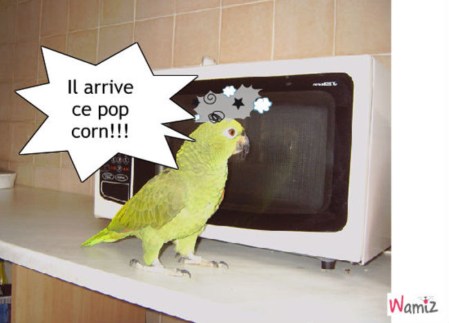 Le pop corn, lolcats réalisé sur Wamiz