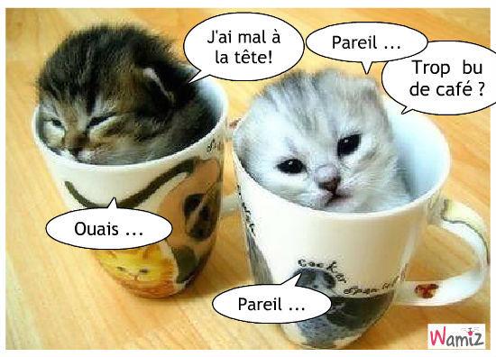 Dimanche 5 octobre Le-reveil-cafeine-42482