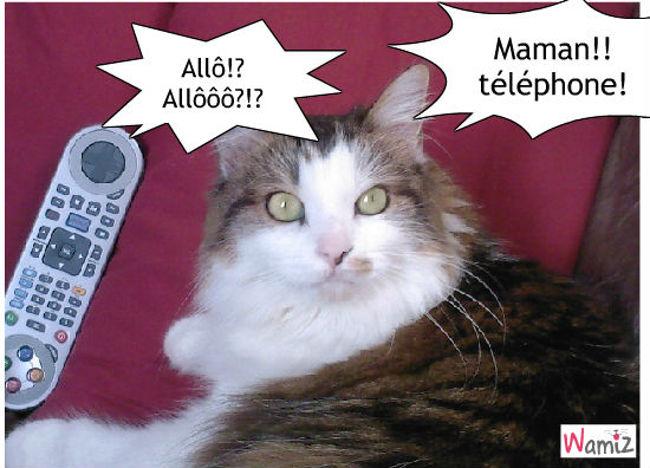 Le téléphone, lolcats réalisé sur Wamiz
