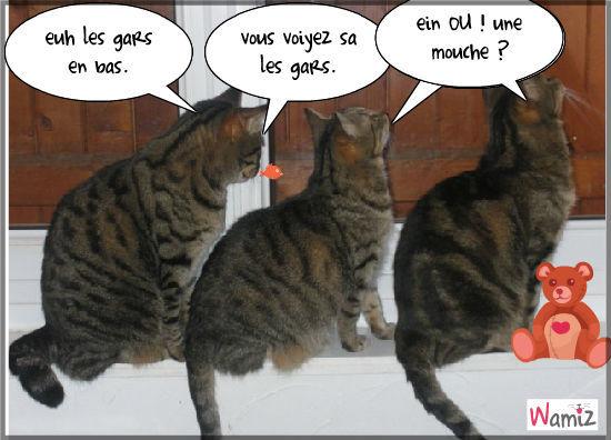 Bekannt les chat nono : Tooniz lolcats réalisé sur Wamiz OY71