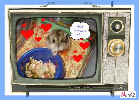 les hamster connu, lolcats réalisé sur Wamiz