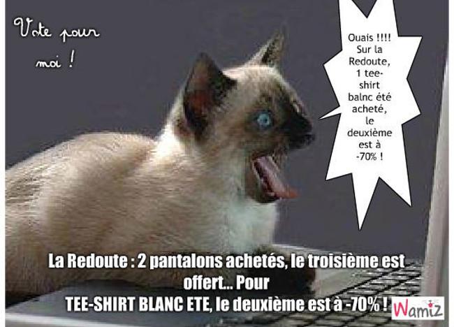 Les offres La Redoute, commentés par un chat, lolcats réalisé sur Wamiz