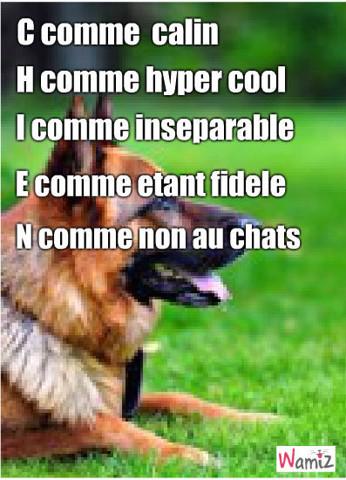 les qualités d'un chien, lolcats réalisé sur Wamiz