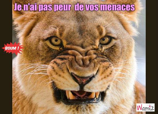 """Résultat de recherche d'images pour """"lionne en colère"""""""