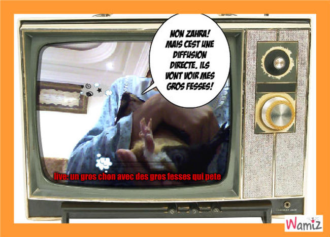 live: un cochon dinde qui pete, lolcats réalisé sur Wamiz
