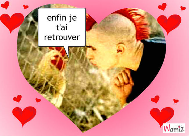 love, lolcats réalisé sur Wamiz