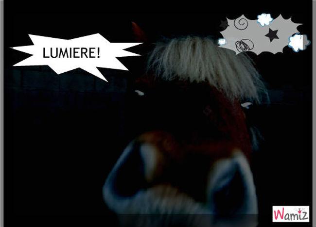 Lumière!, lolcats réalisé sur Wamiz