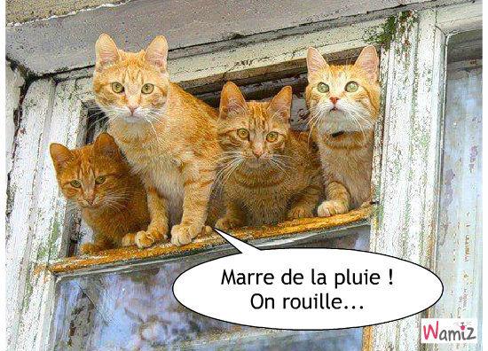 Mardi Soleil En Greve Ptitebrune14 Blog Regime