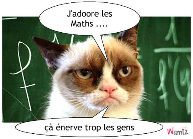 Mathématiques, lolcats réalisé sur Wamiz