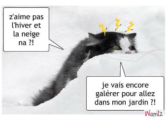 Drôle D'hiver Noël Or Transparent Motif Rouge Clip Art Libres De Droits ,