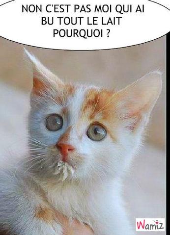 Rencontre gratuite tv genre chat
